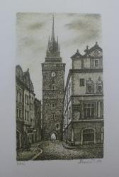 Hynek Luňák - Zelená brána s gotickým domem